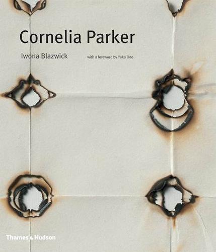 Beauty And Violence - Cornelia Parker