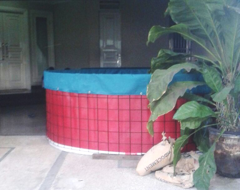 Kolam Terpal di Teras Rumah