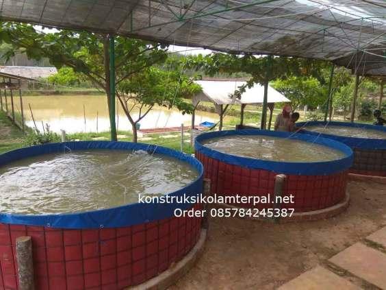 LARIS! Ini Kolam Terpal Fullset yang di Jual Palembang