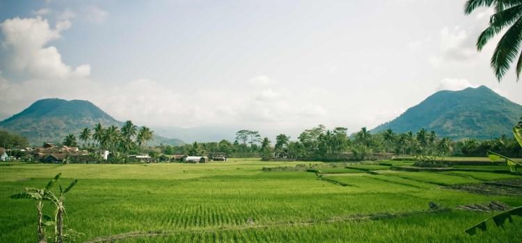 Hilangnya Hak Milik dan Hak Menuntut Atas Tanah Yang Ditelantarkan Pemilik?