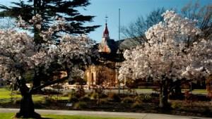 lincoln-university