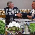 Gerardo Morales detrás del millonario proyecto de la mayor plantación de marihuana del mundo, en sociedad con EEUU
