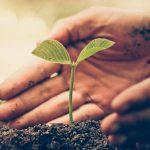 La esperanza frente al escepticismo. En la búsqueda de una definición de espiritualidad. Por Ricardo Vicente López