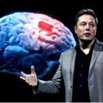 """Transhumanismo: Elon Musk propone """"Neuralink"""", implante craneano con IA para """"arreglar lo que funciona mal en el cerebro"""""""