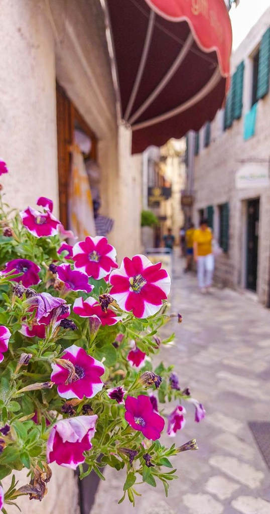 10_things_to_see_and_do_in_amazing_Kotor_Montenegro_Kookylovestotravel_23