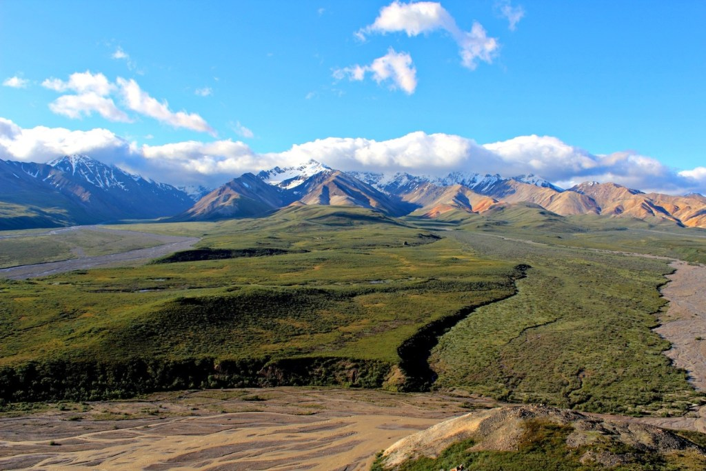 Denali National Park: green tundra and mountains