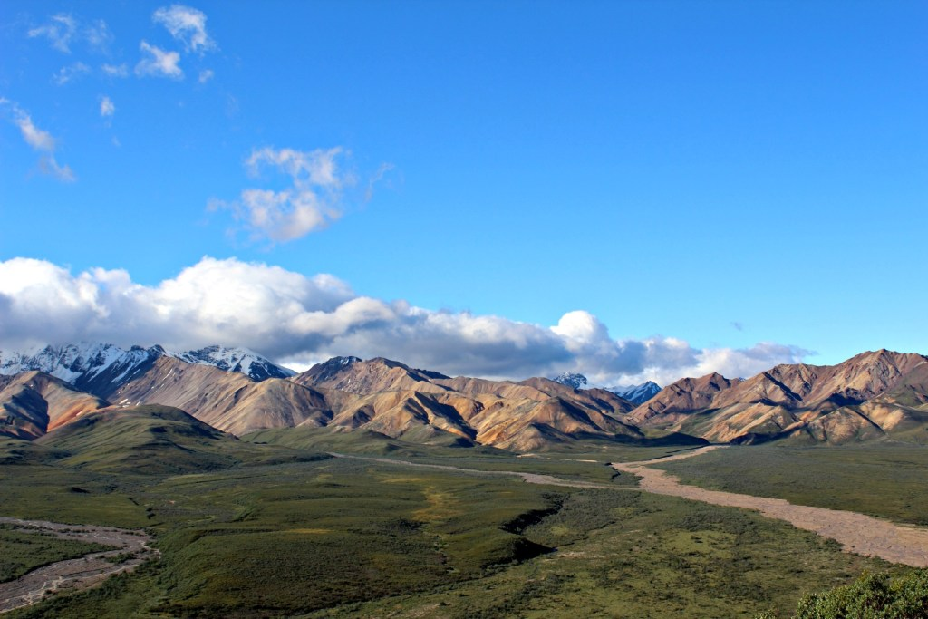 Denali National Park: view of the Alaska Range across the green tundra