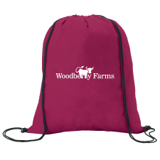 non-woven-drawstring-backpack-15660