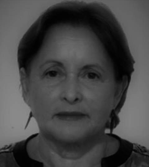 Ana Maria Segall Corrêa
