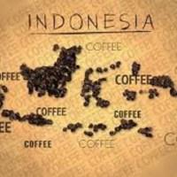 8 Jenis Kopi Khas Indonesia