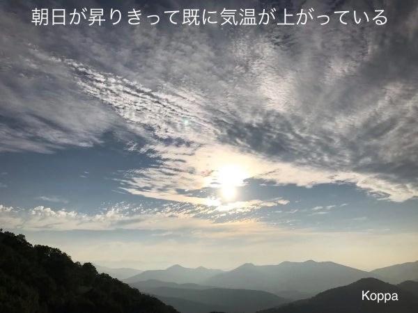 晴れた朝の空