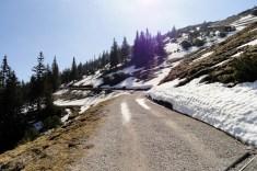 Die Restschneefelder schmelzen dahin, der Frühling ist früher dran in den Bergen als letztes Jahr