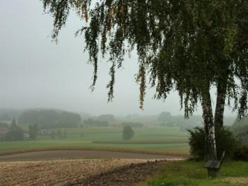 Am Waldrand des Bonholz