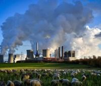 В ЕС за год сократили выбросы углекислого газа