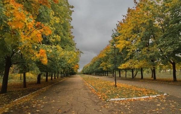 Погода на выходные 24-25.10.2020: небольшие дожди и солнце ...