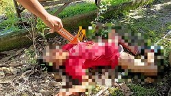 Darmanto alias Toto ditemukan dengan keadaan tewa dan luka tusuk di leher. (foto: Borneo24/koranbanjar.net)