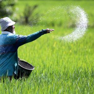 Manfaatkan Radio di Tanbu, PPIU YESS Kalsel Bangun Jejaring dan Ekosistem Bisnis Pertanian