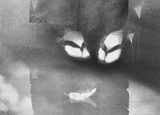 el-ganso-salvaje-mori-ogai