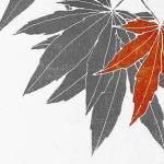 'Kinshu. Tapiz de otoño', de Teru Miyamoto