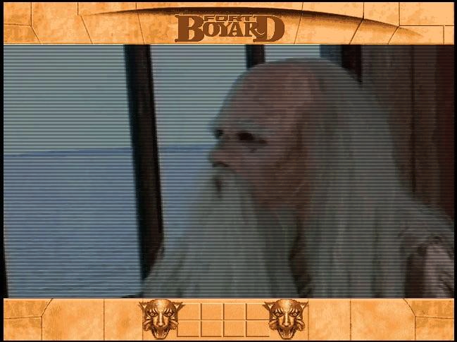 Jeu Fort Boyard pour MS-DOS