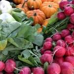 秋に種まきできる!秋からの家庭菜園にオススメの野菜7選!