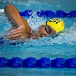 水泳が脳に与える効果5選!水泳は体だけじゃなく脳にも良い?