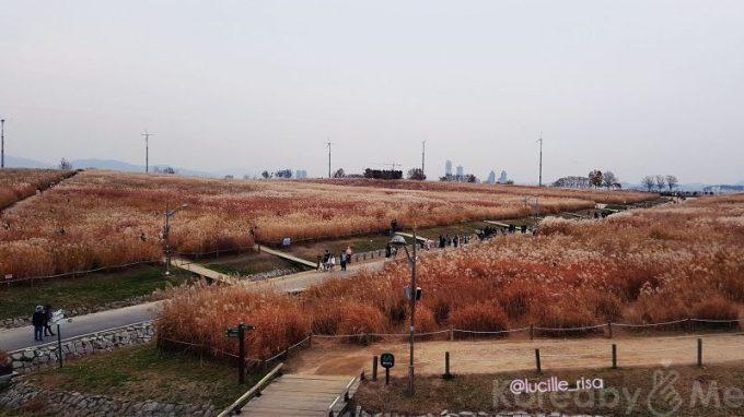 Parks In Seoul