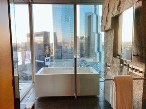 浴槽+シャワー