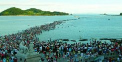 Jindo Miracle Sea Festival
