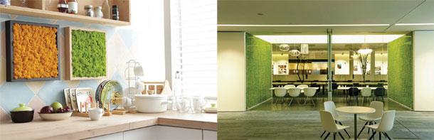 "Organic-&-Maintenance-Free-DIY-Finish-""Scandia-Moss-SM-Panel"""