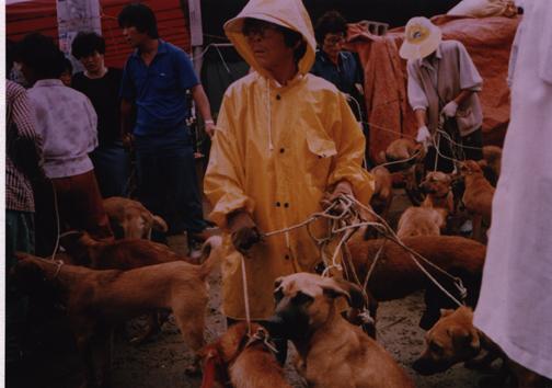 Market day Gupo Oh