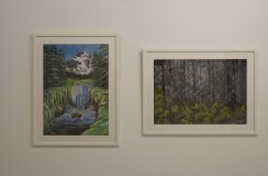 Enya Elswood: Glacier Waterfall (2011), Birch trees (2011).