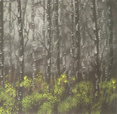 Enya Elswood: Birch trees (2011)