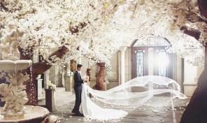 koreanpreweddingphotography_CBON32