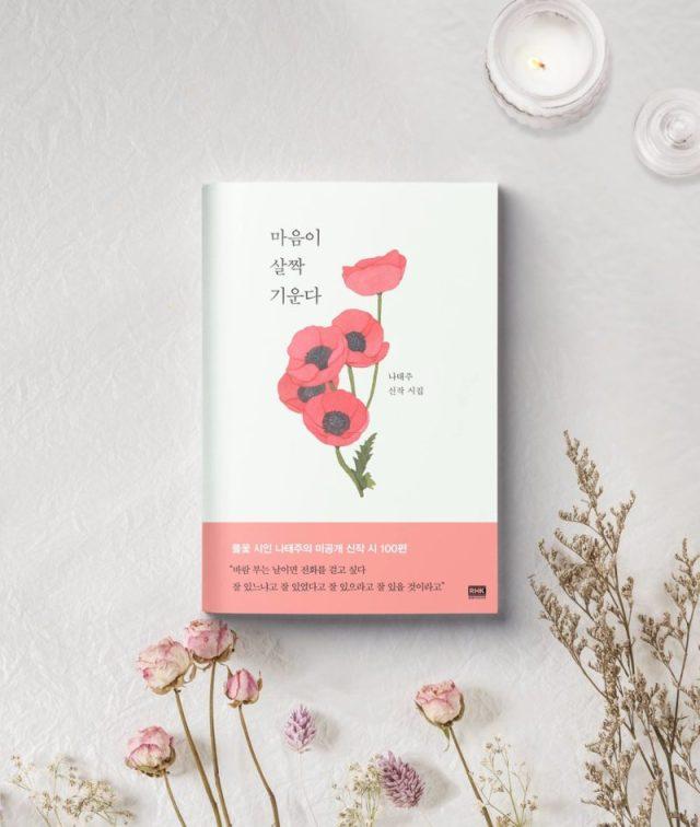 La imagen tiene un atributo ALT vacío; su nombre de archivo es book-romance-is-a-bonus-book-the-heart-is-drawn-to-you-koreandramaland-copyright-rhk-800x945.jpg