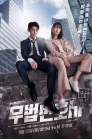 Lawless Lawyer / Avocat fără legi