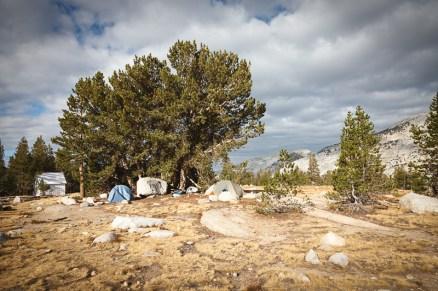 Yosemite_HighSierras-446