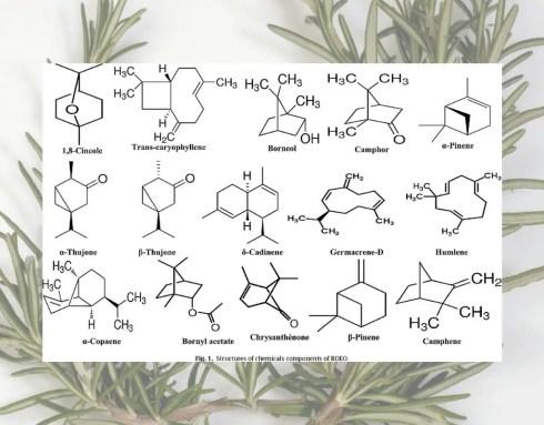essential oils bad for skin fragrance free skincare volatile organic compounds fragrance