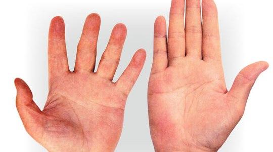 손 모양으로 보는 성격