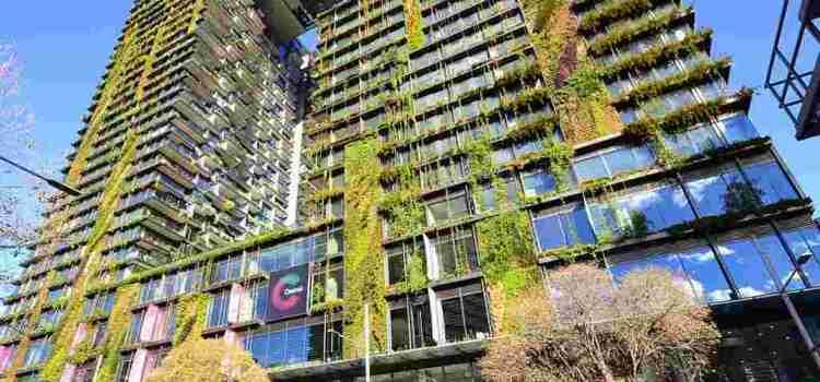 시드니 아파트 2012년 이후 20 증가 작년 주택건축허가 1 3이 유닛