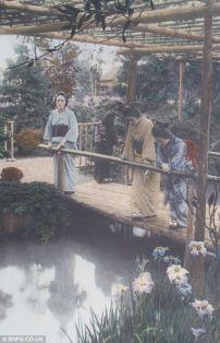 Japan in 1868 - 1912