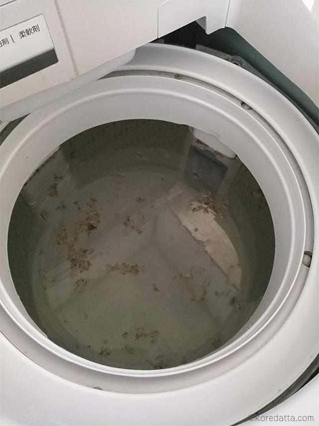 洗濯機の掃除に酸素系漂白剤 シャボン玉石けんとお湯で。浮いた汚れが沢山!洗濯槽がきれいに!