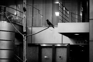30_Tokyo-blur_27