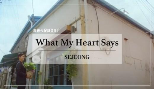【日本語訳/歌詞/カナルビ】ドラマ青春の記録OST『What My Heart Says(내 마음이 그렇대)/セジョン』