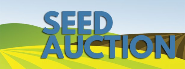 seed-auction-graphic-wpnobid