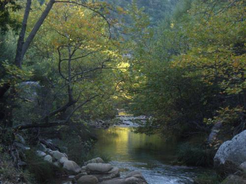 Αποτέλεσμα εικόνας για ποταμός Νεδα