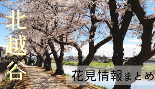 【2020年版】北越谷駅の元荒川沿い桜堤通り花見スポット情報まとめ
