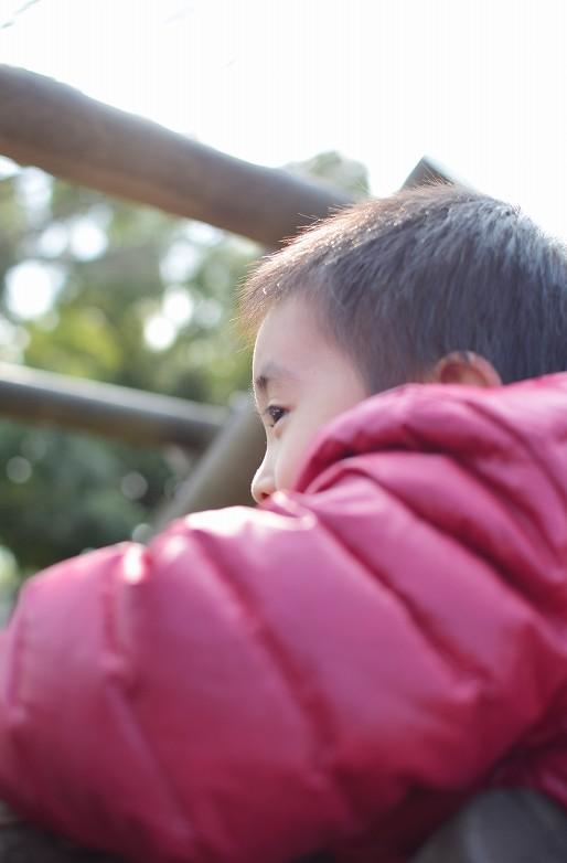 AF-S DX NIKKOR 35mm f/1.8G 子供たちを撮影
