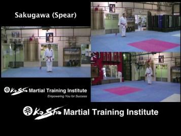 Sakugawa Spear cover