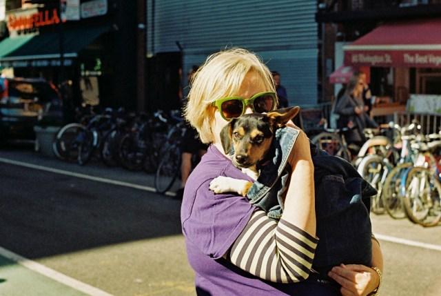 dog_glasses_web